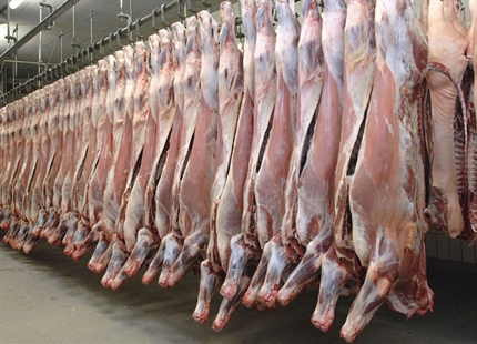 Abattoir humidification